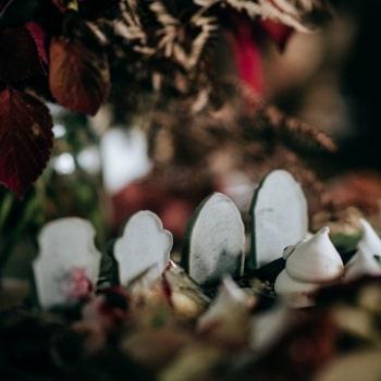 Fleur-Challis-Photography-28